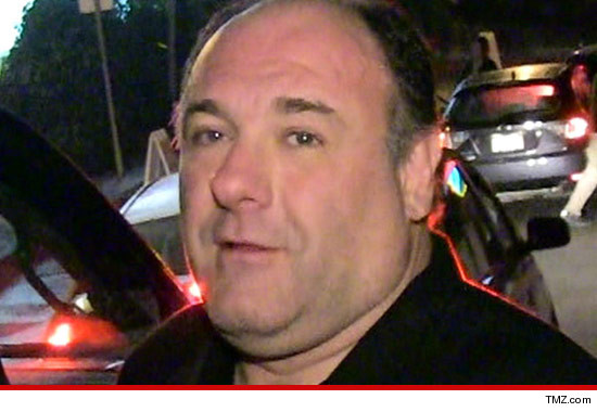 0806_james_gandolfini_article_tmz