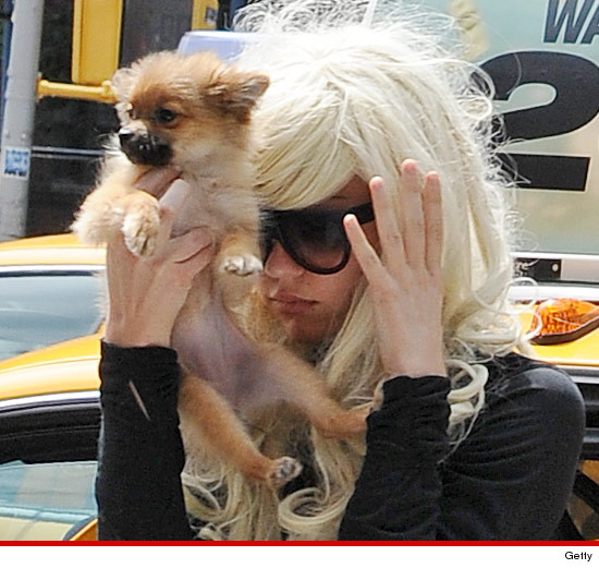 0809_amanda_bynes_dog_article_getty