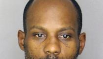 DMX -- Arrested In South Carolina [MUG SHOT]