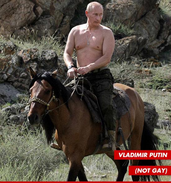 0821-vladimir-putin-not-gay-tmz