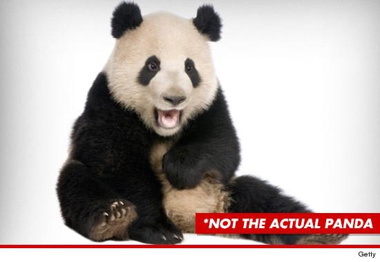 0823_not_actual_panda