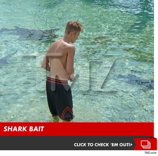 0827_justin_bieber_shark_photos_launch