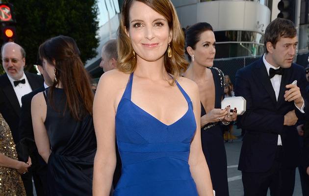 Tina Fey, Sarah Silverman & Julia Louis-Dreyfus Stun at Emmy Awards!