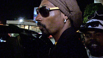 Snoop Lion -- Dissin' Lane Kiffin'