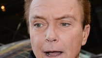 David Cassidy Sued -- The Car Crash 'Victim' Is a Phone-y Baloney