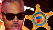 Chris Brown -- Secret Service Could Save Him from Prison