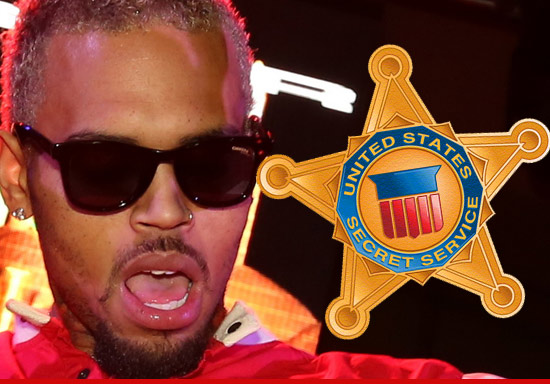 1030_chris_brown_secret_service_article_3