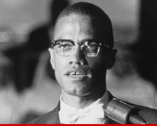 malcolm x civil rights activist essay