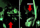 Drake & Rihanna Hit the Strip Club -- Drop $17,000 o