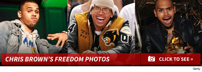 1120_chris_brown_freedom_footer