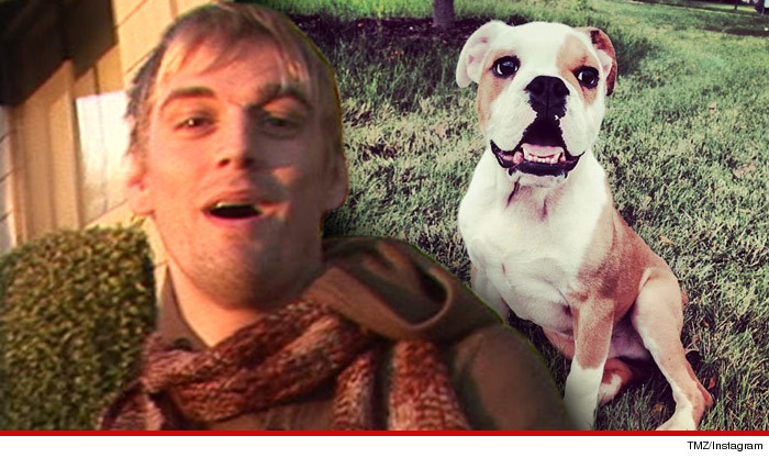 1121-aaron-carter-dog