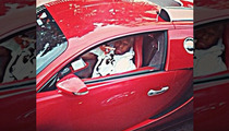 Birdman Gives Turkeys to Poor People ... Drives Off In $2.5 Million Bugatti
