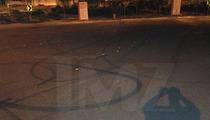 Paul Walker Crash -- Cops Warn Fans ... STOP BURNING RUBBER AT DEATH SCENE