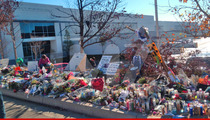 Paul Walker Death -- Fan Tributes Moved From Crash Site