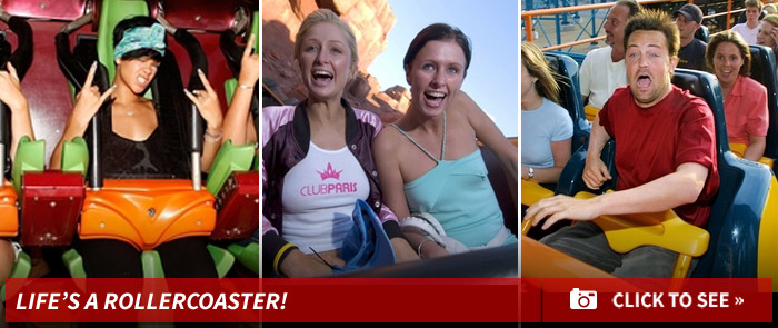 1211_lifes_a_rollercoaster_footer