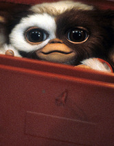"""Gremlins"" Director Speaks Out: Gizmo Is VERY Difficult"