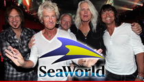 REO Speedwagon -- 'Blackfish' Moved Us ... We're Quitting SeaWorld Gig Too