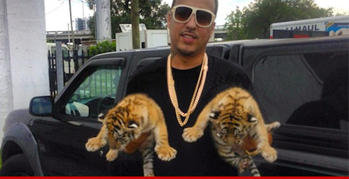 1219-french-montana-tigers