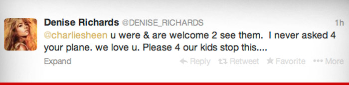 12223_denise_richards_retweet