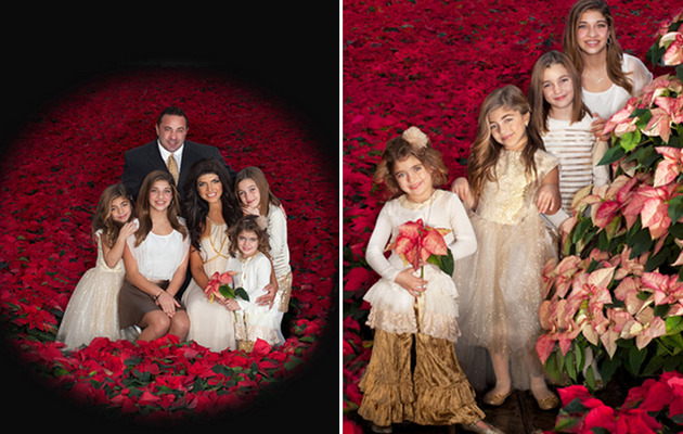 Teresa Giudice Shares Super Festive Family Holiday Card!
