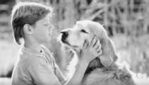 Peter in 'Homeward Bound: The Incredible Journey': 'Memba Him?!