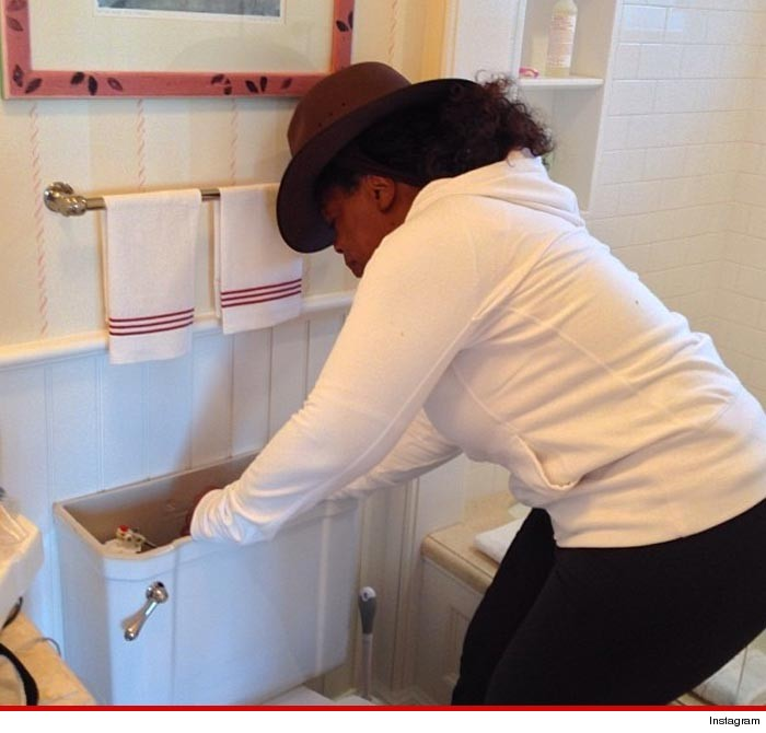 0113-oprah-toilet