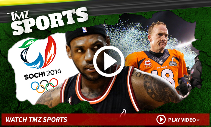 0205-tmz-sport-play