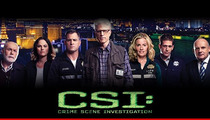 'CSI' -- Straight Crew Member Sues Over Alleged Gay Bashing