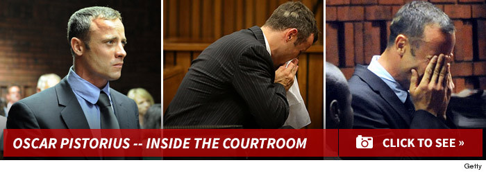 0310_oscar_pistorius_courtroom_footer