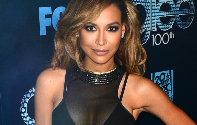 Naya Rivera Sparks Boob Job Rumors After Revealing Bikini Pic