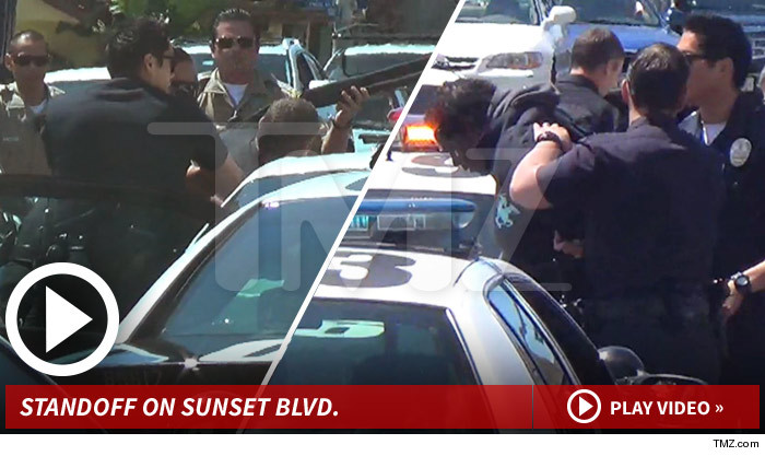 LAPD Arrest Sunset Blvd