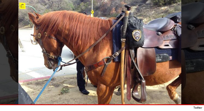 0404_lapd_horse_twitter