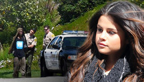 Selena Gomez Stalker Charged with Crimes... Again