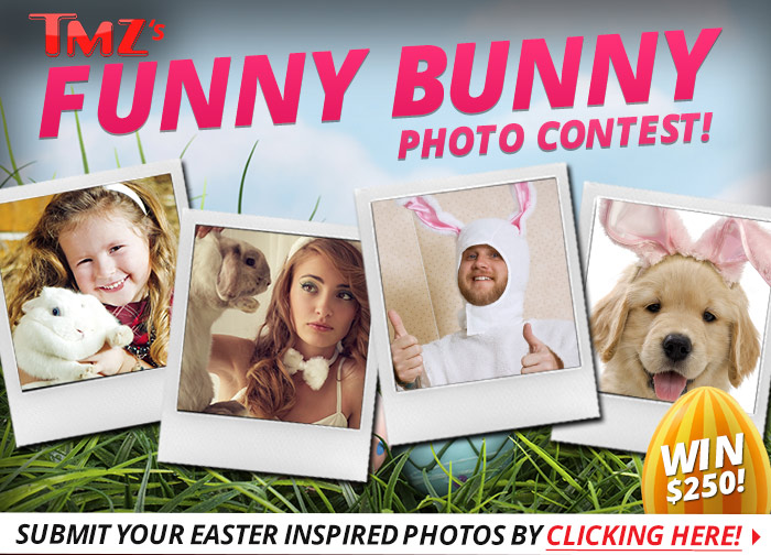 funny_bunny_photo_contest