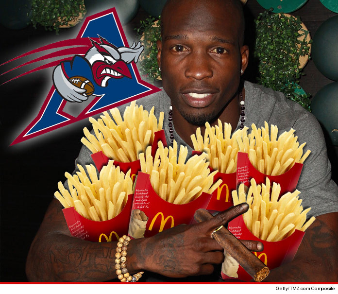 0417-chad-ochocinco-fun-art-01