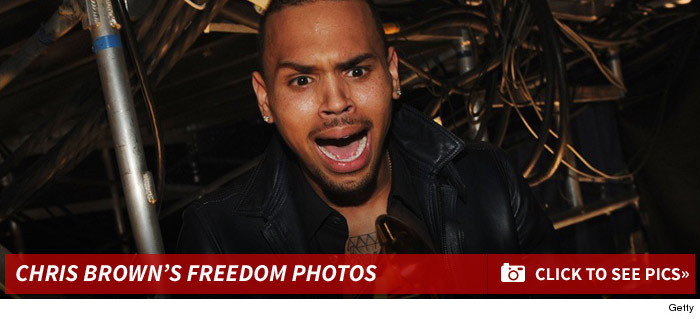0424_chris_brown_freedom_photos_footer