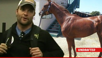 Wes Welker -- Allegations of Race Horse Deception