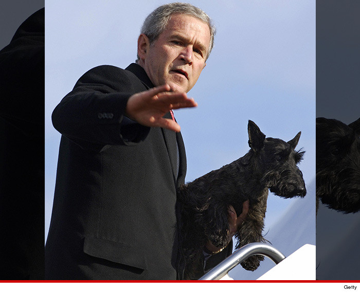 0517-george-bush-dog-getty-01