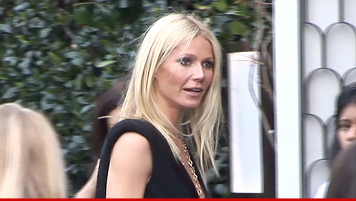 Gwyenth Paltrow Internet War