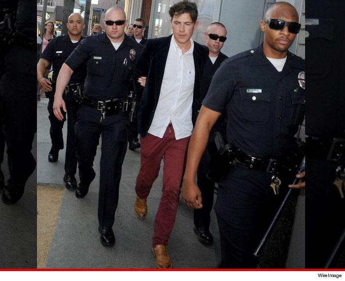 Brad Pitt Attacker Vitalii Sediu