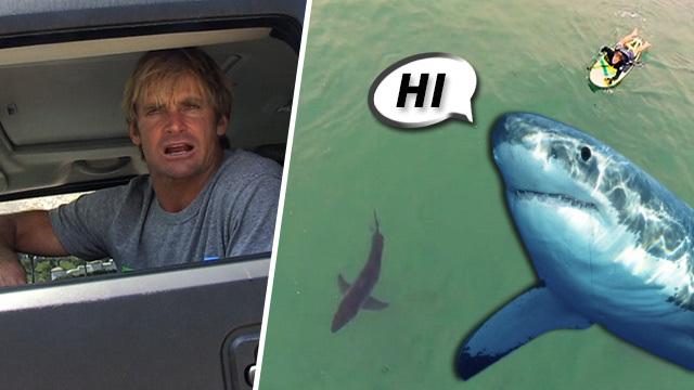 Laird Hamilton -- Go Ahead, Swim with Sharks ... But How's ...  Laird Hamilton 2014