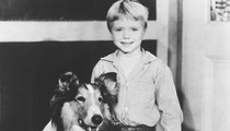 Little Timmy on 'Lassie': 'Memba Him?!