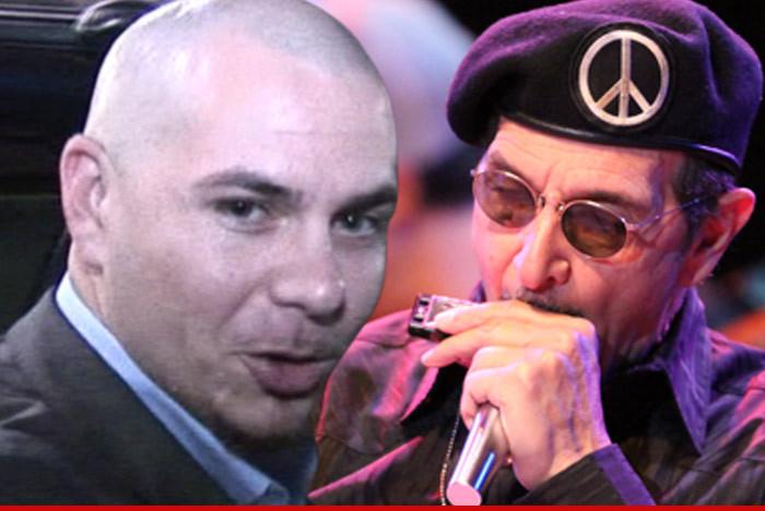 Did Pitbull & Kesha Steal 'Timber'? -- Harmonica Player: They ...