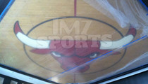 Michael Jordan -- Chicago Bulls Center Court Logo ... Is In My House!!!