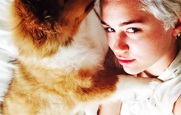 Miley Cyrus Adopts Adorable Dog Named Emu, Says Floyd Gave His Blessing