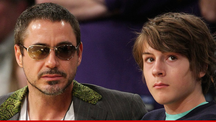 Robert Downey Jr Son Arrested