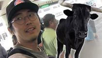 'Walking Dead' Star Steven Yeun -- Zombie Meat's No Match for Bull Wang