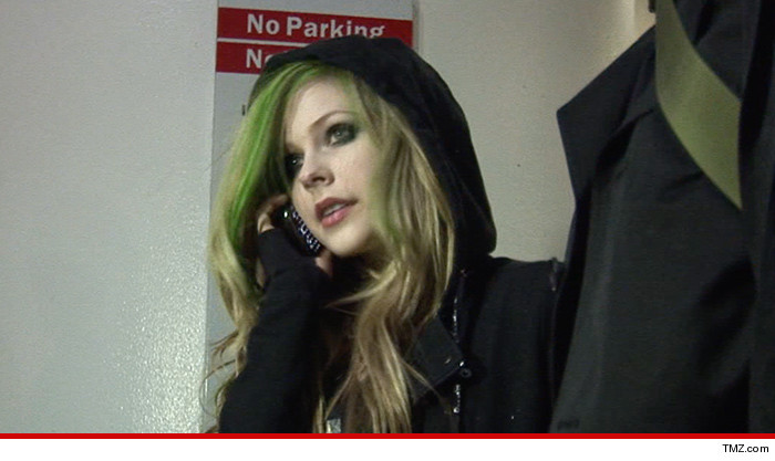 Avril Lavigne Concert Lawsuit