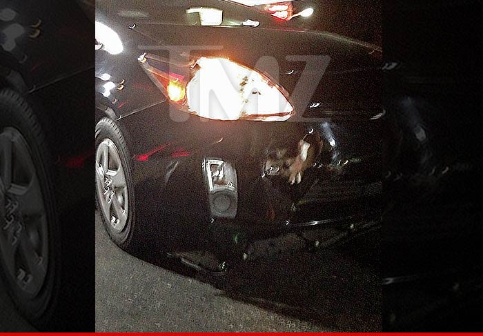 Kylie Jenner Crash