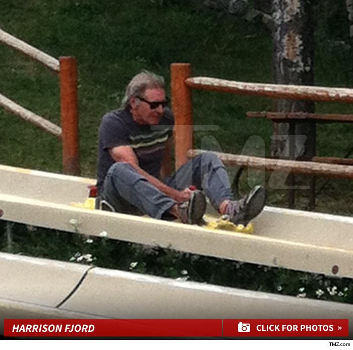 Harrison Ford Broken Ankle